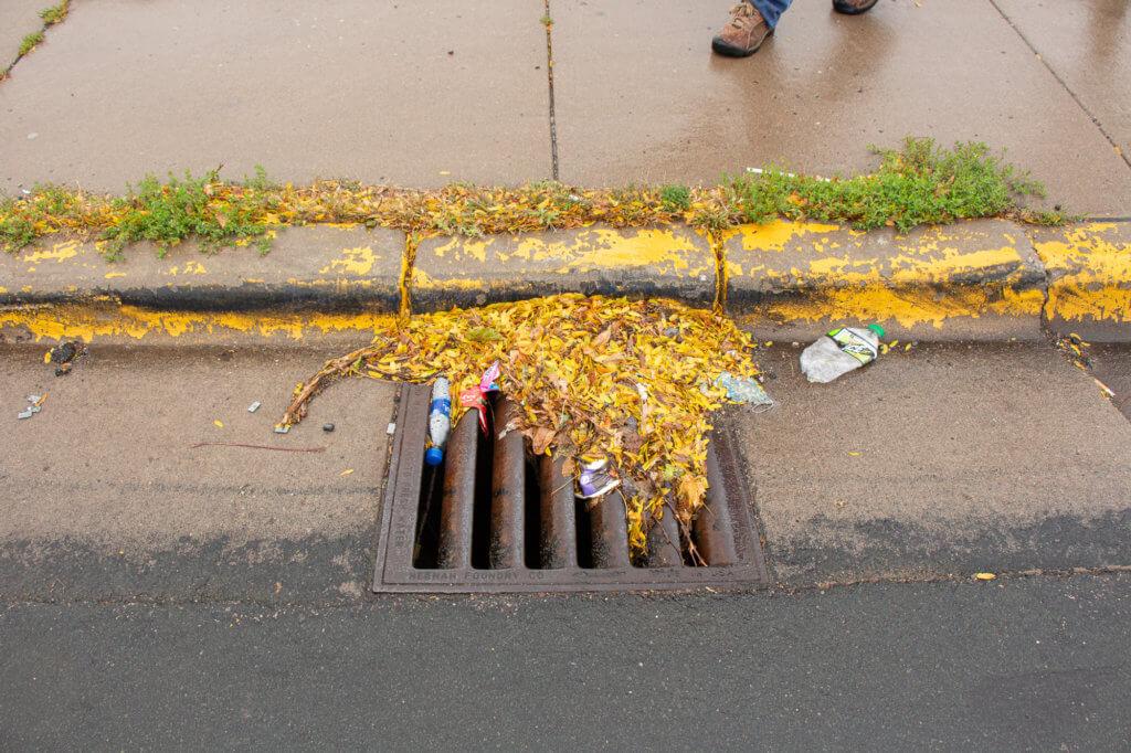 Storm drain litter